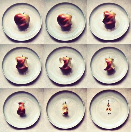 Apple life Canvas Print