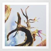 Insta Texas Trees Art Print