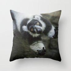 Lemur In The Glass Throw Pillow