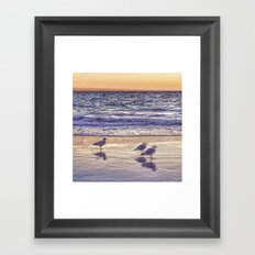 Birds on the Beach at Sunset Framed Art Print