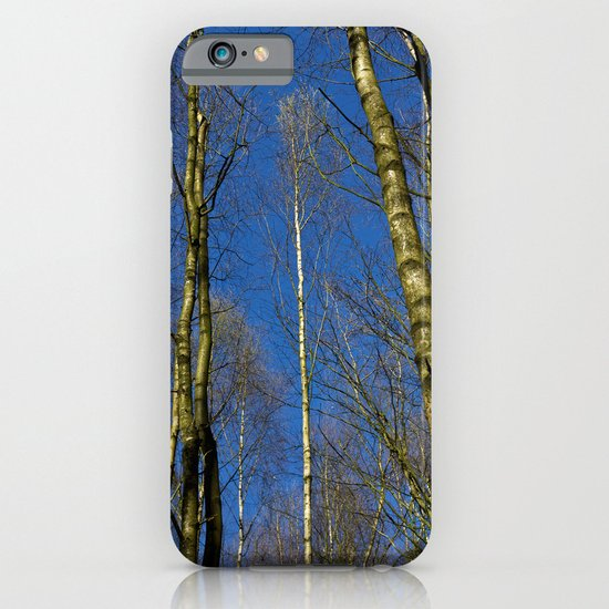 The Still forest iPhone & iPod Case