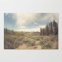 In Search Of Ansel Canvas Print