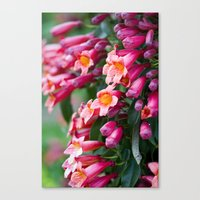 We Were Made For This Canvas Print