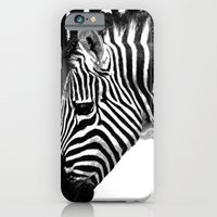 zebra iPhone & iPod Cases featuring Zebra by Regan's World