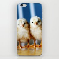 buckeye chicks iPhone & iPod Skin
