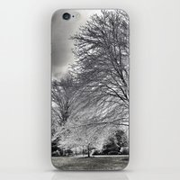 As The Cold Winds Blow..… iPhone & iPod Skin