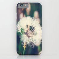 iPhone & iPod Case featuring Lazy Summer by The Haus of Chaos: Alli Woods Frederick