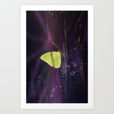 Yellow Butterfly in the Mystic Purple Meadow Art Print