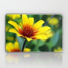 Prairie Flower II Laptop & iPad Skin