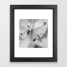 Stamen I Framed Art Print