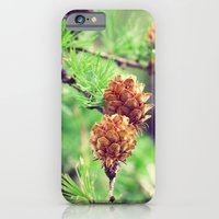 iPhone & iPod Case featuring Pinecones by Laura George
