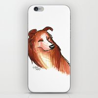 Brush Breeds-Rough Collie iPhone & iPod Skin