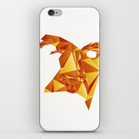 Polyface Color iPhone & iPod Skin