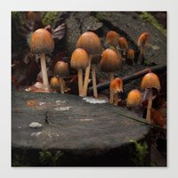 The Knights of the Round Table Canvas Print