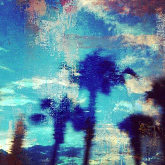 Underwater Palms Canvas Print