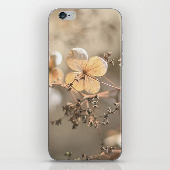 still beautiful °3 iPhone & iPod Skin