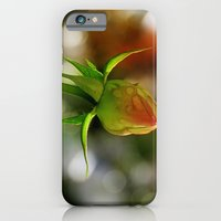 Raindrops On A Rosebud iPhone 6 Slim Case