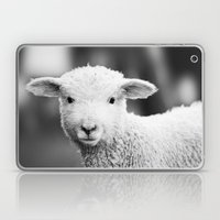 Lamb In Black And White Laptop & iPad Skin