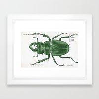 Green Beetle Postcard Framed Art Print