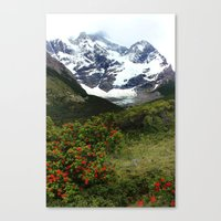 Torres Del Paine, Patago… Canvas Print