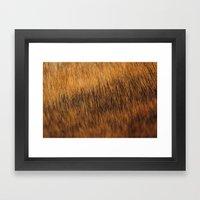 Brindle Fur Framed Art Print