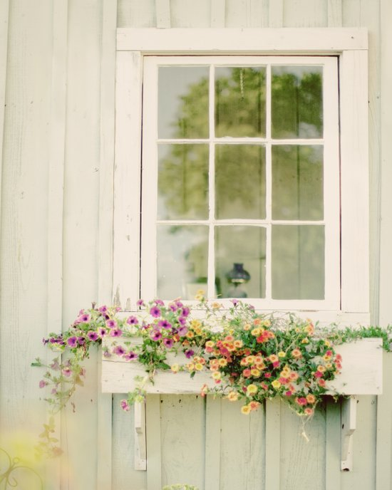 WINDOW PERFECT  Canvas Print