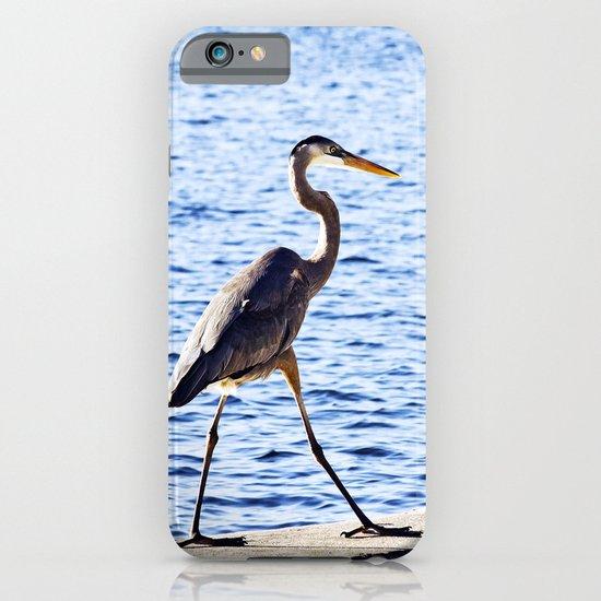 Blue Heron Strut iPhone & iPod Case