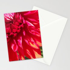 Seeing Red Stationery Cards