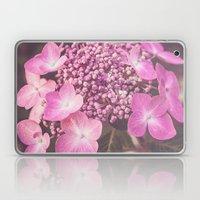 Botanical Pink Rose Purple Lace Cap Hydrangea Flower Laptop & iPad Skin