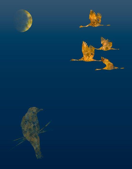 Moon-lit Flight Canvas Print