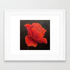 Rose Essence Framed Art Print