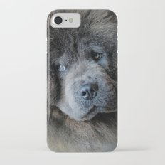Watching Master - Blue Chow Chow iPhone 7 Slim Case