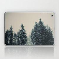 Winter Fancy Laptop & iPad Skin