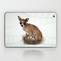 A Little Confused Laptop & iPad Skin