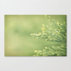 drop Canvas Print