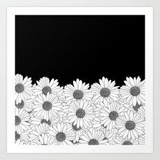 Daisy Boarder Art Print