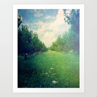 Apple Orchard In Spring Art Print