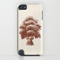 iPod Touch Cases featuring Old Growth  by Terry Fan