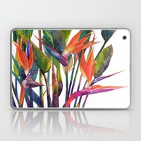 The bird of paradise Laptop & iPad Skin