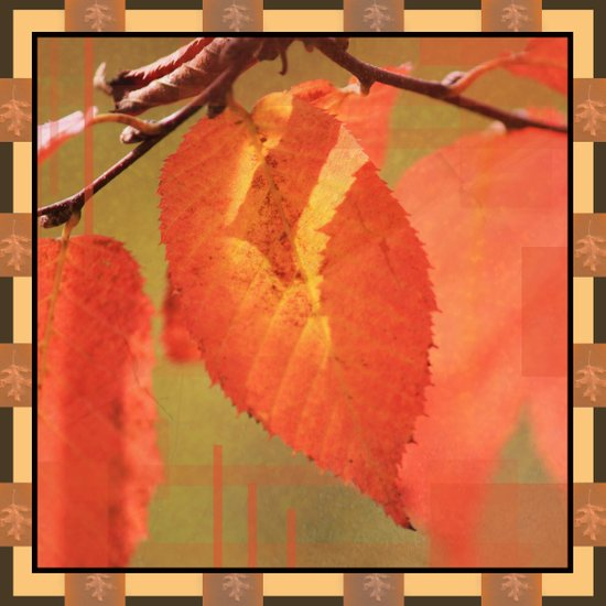 Shadowed Orange/Red Leaf Box Type 2 Art Print