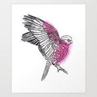 Flaming Galah Art Print