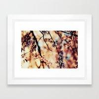 Enchanté Framed Art Print