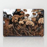 Bronze iPad Case