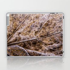 frosty old leaf Laptop & iPad Skin