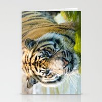 Tiger in the water  Stationery Cards