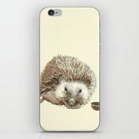 Hector the Hedgehog iPhone & iPod Skin