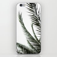 Palm Leaves 2 iPhone & iPod Skin