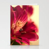 {lily the pink} Stationery Cards
