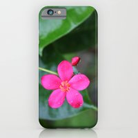 iPhone & iPod Case featuring Follow the leader by halfwaytohear