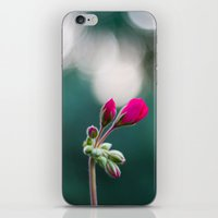 Reaching iPhone & iPod Skin